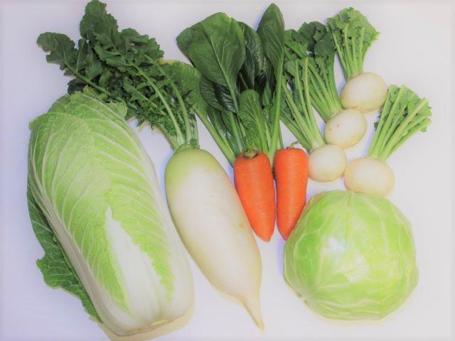 切り漬けを作れる野菜